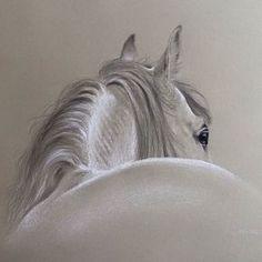 Horse in Pencil & White Chalk #richardmoore #artist #art #horse…