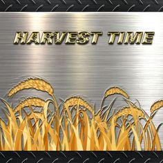 Harvest Time, Harvest