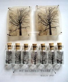 You could have tree representing each season- different stages, captured in…