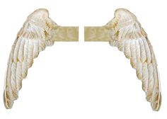angel wings2