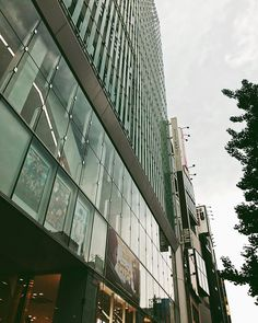 """A movie theater """"ShinjukuPiccadilly"""" iPhone7/Procamera/VSCO/  #新宿ピカデリー#shinjukuPiccadilly#tokyo #shinjuku #japan #procamera #vscocam #youmobile #instadiary #shotoniPhone #shotoniPhone7 #instagramjapan #ig_japan #instadiary #iphonephotography #ink361_mobile #ink361_asia #reco_ig #igersjp #mwjp #team_jp_東 #indies_gram #hueart_life #ig_street #streetphotography #写真好きな人と繋がりたい #写真撮ってる人と繋がりたい #iPhone越しの私の世界 #tokyocameraclub"""