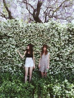 Hipsters in a rosebush where else they gonna be?