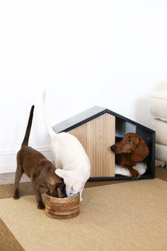 EFFECT / Домик - деревянный домик / будка для домашних животных. Домик для кошки или собаки.