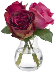 Diane James Rose Trio in Bud Vase Online Boutique Stores, Bud Vases, Cool Gifts, Holiday Gifts, Glass Vase, Valentines, Flowers, Plants, Inspiration