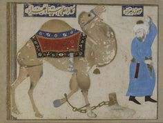 Fettered camel and keeper; reverse: calligraphy panel | late 15th century | Bizhad | Safavid period | Opaque watercolor, ink and gold on paper | Herat, Afghanistan | Purchase | Freer Gallery of Art | F1937.22