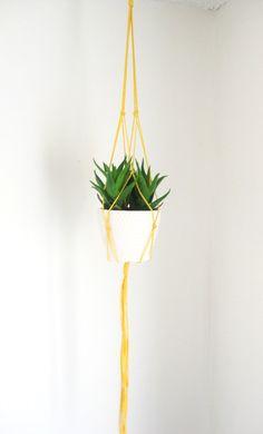 Simple pop of color macrame plant hanger