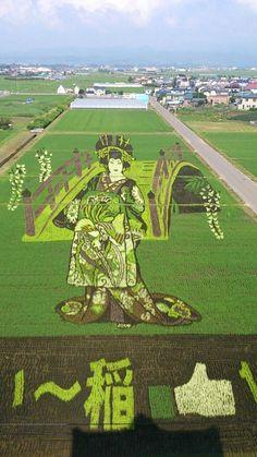 痛いニュース(ノ∀`) : 【画像】 日本の「田んぼアート」がすごいことになってると話題に - ライブドアブログ