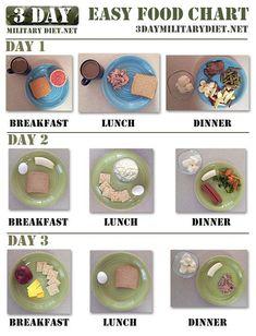 Military Diet Food Chart / #Chart #Diet #Food #Military Diet Food Chart, Food Charts, Diet Food List, Food Lists, Diet Tips, Diet Recipes, Diet Plan Menu, Diet Meal Plans, Easy Diet Plan