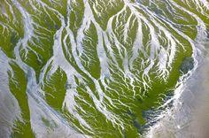 YannArthusBertrand - Algues vertes dans la baie de Saint-Brieuc, Côtes-d'Armor, France (48°32' N - 2°41' O).