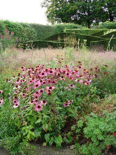 Oudolf's personal garden, Hummelo, Netherlands _/\/\/\/\/\_