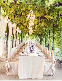 Vineyard Wedding in northern California - Trentadue Winery. Wow--that arbor of grapevines as a canopy! With chandeliers, no less!
