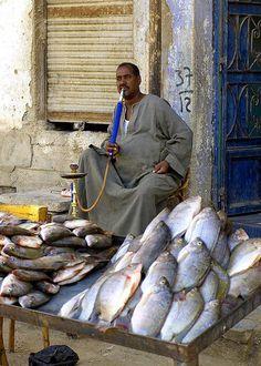 Fish Vendor, Egypt