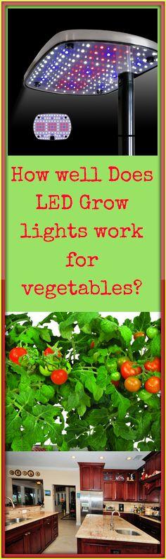 Do LED Grow Lights work for Vegetables