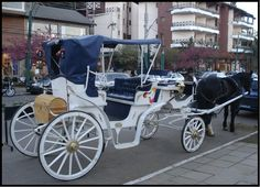 Se Rio Grande do Sul é o estado das carroças, Gramado não seria diferente.