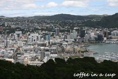 mount victoria lookout in wellington, new zealand Cool Places To Visit, New Zealand, New York Skyline, The Past, Weather, Victoria, River, Big, Outdoor