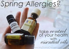 Spring Allergy Remedies using essential oils