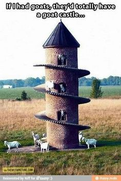 """:) Goat castle... Needs sign """"Have fun storming the castle boys!"""" -  the princess bride"""
