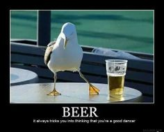 Funny pictures about Nice to meet you. Oh, and cool pics about Nice to meet you. Also, Nice to meet you. Lol, Haha Funny, Funny Cute, Funny Memes, Funny Stuff, Funny Things, Funny Pics, Beer Funny, Funny Animal Pictures