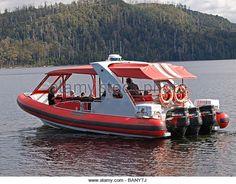 Find the perfect rib craft stock photo. Rib Boat, Speed Boats, Lifeguard, Rowing, Tasmania, Ribs, Hollywood, Australia, Stock Photos