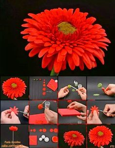 DIY - THE BEST IDEAS AROUND THE WORLD: Gerbera Daisy Picture Tutorial