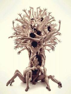 #treeDance