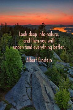 """Look deep into nature, and then you will understand everything better."" - Albert Einstein"