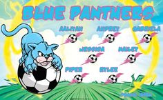 Panthers-Blue-154767 digitally printed vinyl soccer sports team banner. Made in the USA and shipped fast by BannersUSA. www.bannersusa.com