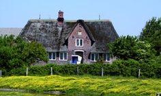 Sylt / Morsum - Morsum-Kliff