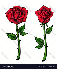 Red Rose Cartoon Style On White Stock Vector (Royalty Free) 489709675 Tattoo Old School, Red Rose Drawing, Rose Drawings, Cartoon Rose, Dibujos Tattoo, Different Types Of Flowers, Rose Decor, White Stock Image, Rose Art