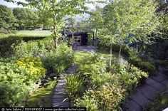 View of garden and green roofed shed - Nigel Dunnett's garden