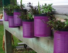 Painted tin cans hold plants, love the purple. Bright colors with bright flowers would be pretty and great for Easter or party themes