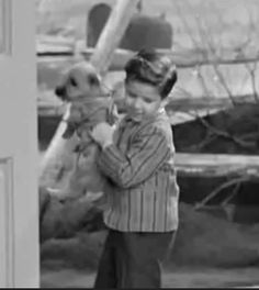 Little Ricky and his cairn terrier Fred on   'I Love Lucy'