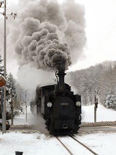 AUSTRIA - Steyr -- Train