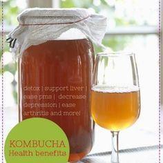 Kombucha health benefits