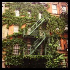 East Village | NYC