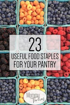 Frugal Food Staples For Menu Planning - Grocery Shopping for Healthy Frugal Food Ideas - 23 Useful Food Staples For Your Pantry Pork Recipes For Dinner, Easy Drink Recipes, Easy Pasta Recipes, Pasta Salad Recipes, Healthy Chicken Recipes, Appetizer Recipes, Coffee Recipes, Healthy Food, Frugal Meals
