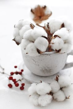 Christmas | Xmas | Jul | Noel. Natural Decoration. Cotton flower. Gossypium Hirsutum