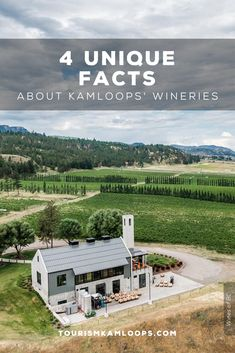 Kamloops is one of the northernmost grape growing areas with four wineries, six vineyards, and 120 acres under vine. Discover these 4 hidden gems and little known facts about them. Cider Making, Unique Facts, Home Buying Tips, Growing Grapes, Shop Local, Unique Recipes, Wineries, Estate Homes, Acre