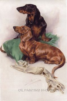 """Beautiful Online Paintings African Animal Pet Dog, Size: 24"""" x 36"""", $130. Url: http://www.oilpaintingshops.com/beautiful-online-paintings-african-animal-pet-dog-2952.html"""