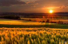 Foto: Josef Mikula Pierre Bonnard, Canon, Cool Photos, Celestial, Sunset, Landscape, Nice, Nature, Outdoor