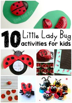 10 Lady Bug Activities for Kids: Bring nature indoors with these crafts, learning activities and lady bug snack. Perfect rainy day activities to keep boredom away!