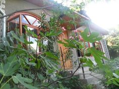 Guest House Rabochaya 8 Yalta Located in Yalta, 700 metres from Yalta, Guest House Rabochaya 8 features free WiFi access and free private parking.  Views of the sea, mountain or garden are featured in certain rooms.  There is a shared kitchen at the property.