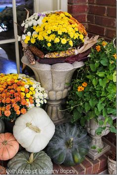 Fall Porch Decor-3!!! Bebe'!!! Gorgeous fall vignette with Indian corn, gourds and pumpkins tucked in among pots of ivy that remain on the porch year round. Just add and subtract for seasonal displays!!!