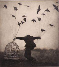 Bird cage.