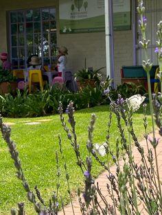 Nature Based Preschool, Preschool Education, Plants, Plant, Planets