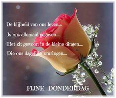 Morning Messages, Love Heart, Good Morning, Best Quotes, Thursday, Hugs, Hearts, Diy, Buen Dia