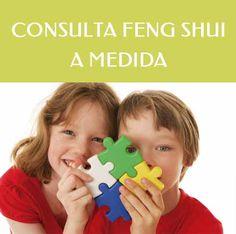 feng shui para niños, adolescentes, consulta feng shui un tema concreto, compraventa casa, local, negocio, alquiler vivienda, negocio, local