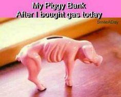My Piggy Bank
