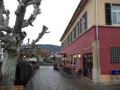 Deidesheim Wine Association's Restaurant in Deidesheim, Germany