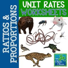 Unit Rates - Animal Top Speed Problems - 6.RP.A.2 - FREEBIE
